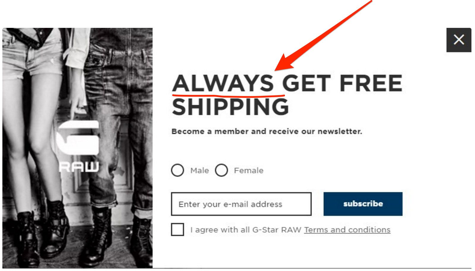 An exit popup on GStar Raw offering free shipping forever
