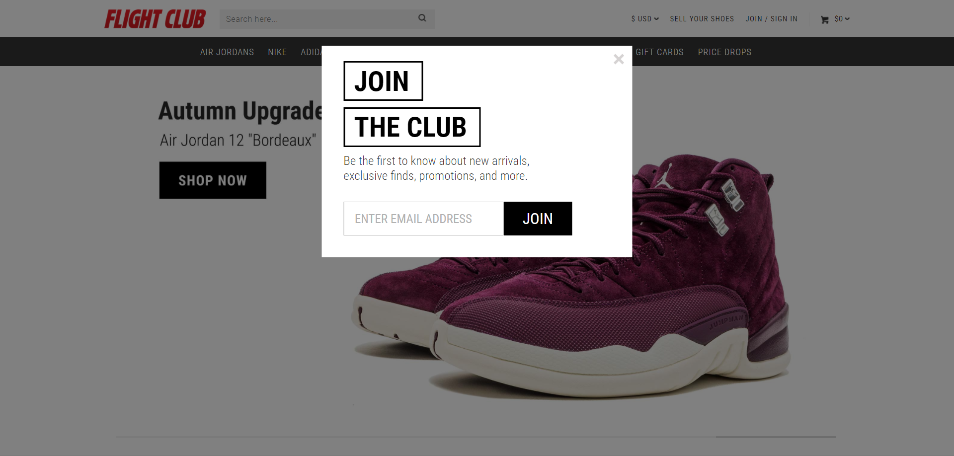 fight club opt-in popup