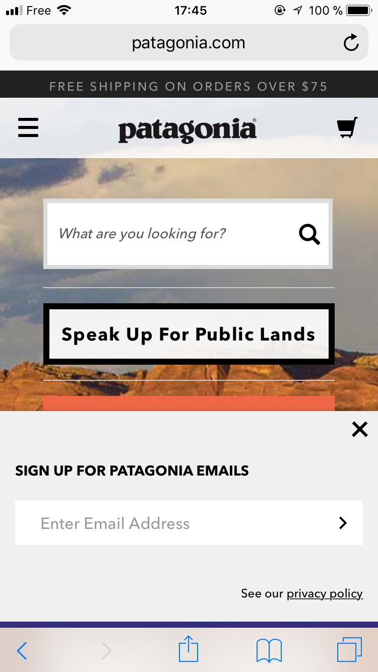 Patagonia's mobile opt in popup