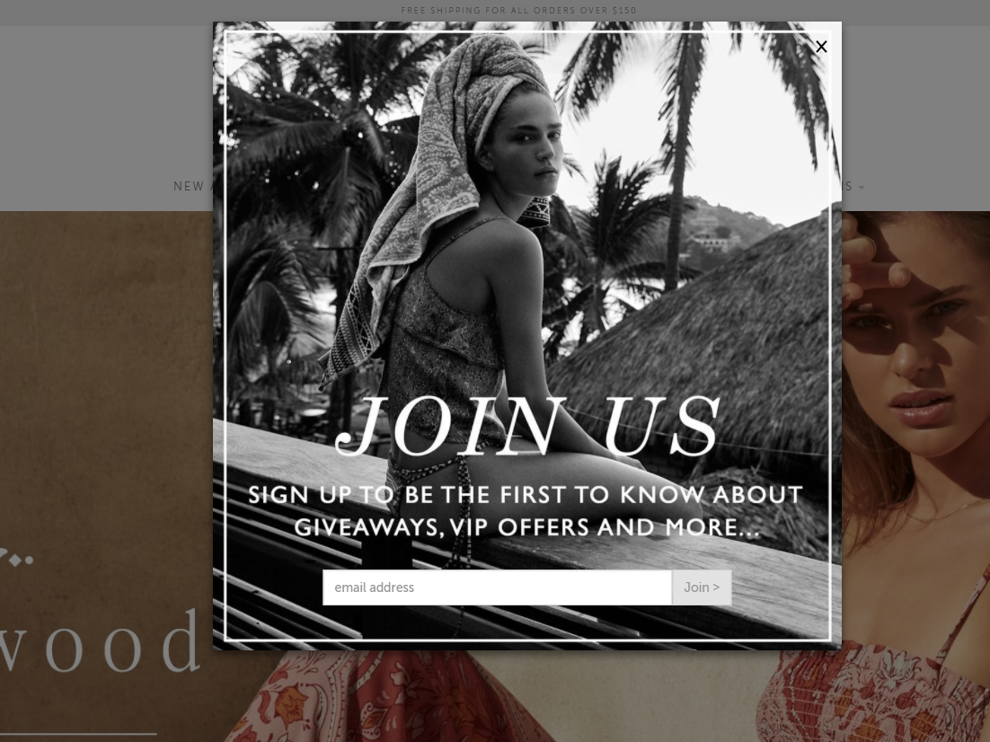 Tigerlily Swimwear's email popup
