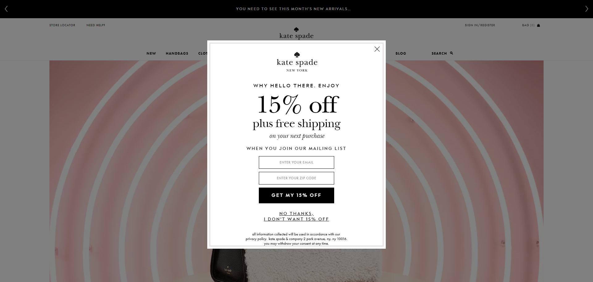 Kate Spade's email popup