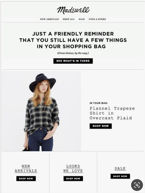 MadeWell's cart abandonment email